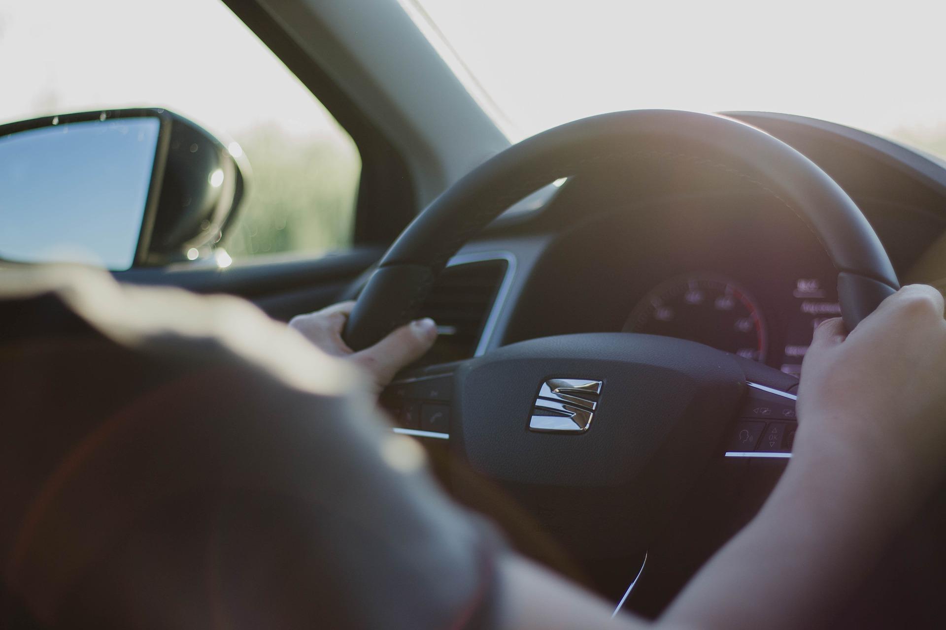 sprign driving.jpg (238 KB)
