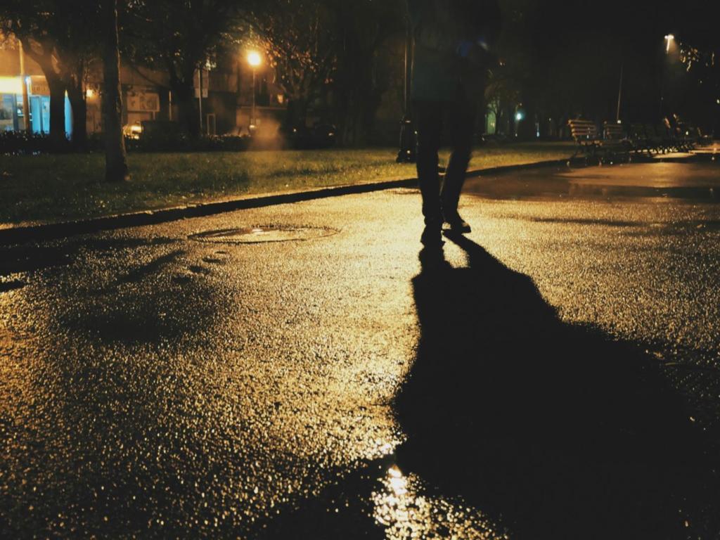 pedestrian walking night .jpg (119 KB)